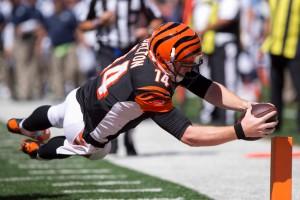USP NFL: TENNESSEE TITANS AT CINCINNATI BENGALS S FBN USA OH