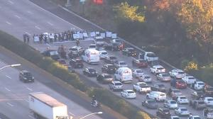 freewayprotest