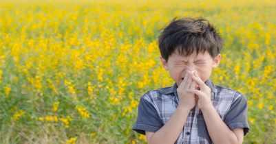 AllergySeason